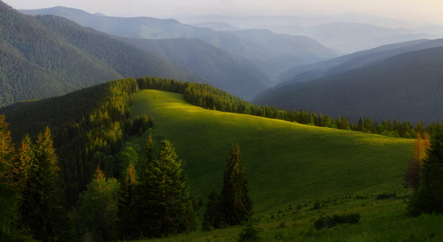 Восхождение на самую высокую гору Межгорского района (гора Стрымба)